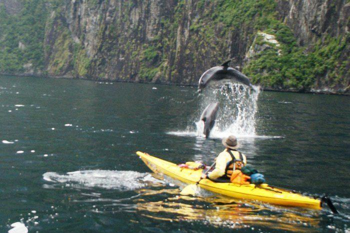 roscoes milford kayaks