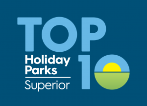 top10 logo dark